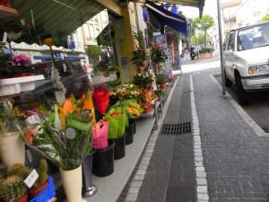 цветы на улочках Гольф-Жуана