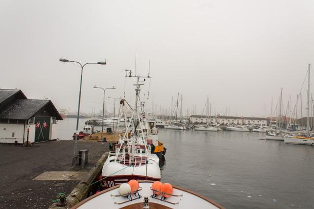 рыбные причалы порта Скаген